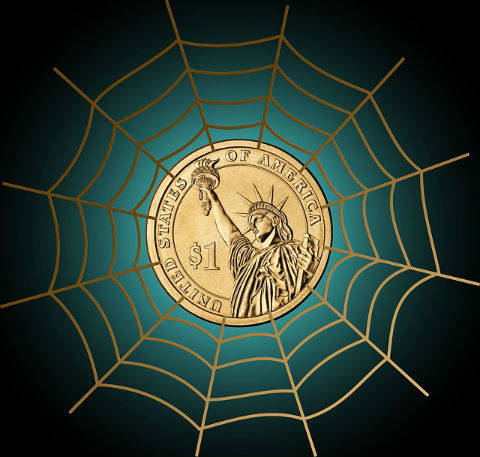 Dollar coin in the middle of a web